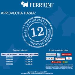 Ofertas de Centro Tepozan  en el folleto de Ferrioni en Los Reyes Acaquilpan
