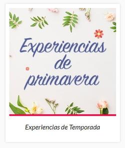 Ofertas de Wishbird  en el folleto de Ciudad de México
