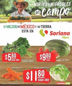 Catálogo Mega Soriana en Ciudad de México ( Caducado )