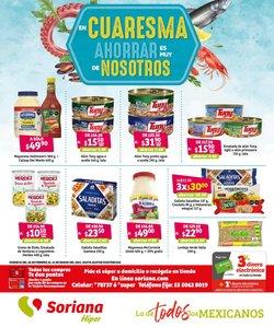Catálogo Mega Soriana en Heróica Puebla de Zaragoza ( 3 días publicado )