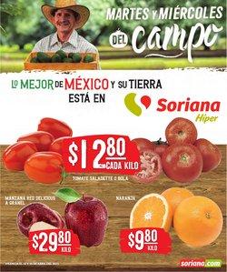 Catálogo Mega Soriana en Tijuana ( Caduca hoy )