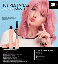 Ofertas de Perfumerías y Belleza en el catálogo de Terramar Brands ( 12 días más )