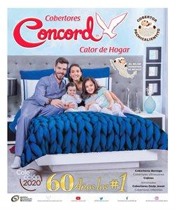 Catálogo Colchas Concord en Monterrey ( Más de un mes )