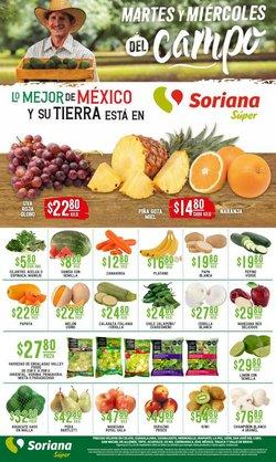 Catálogo Soriana Súper ( Vence hoy)