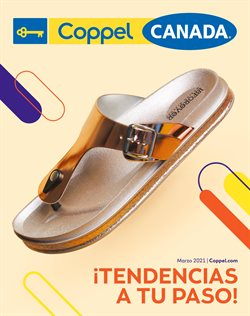 Catálogo Coppel ( Publicado ayer )