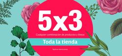 Cupón Natural Scents en Monterrey ( Publicado hoy )