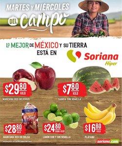 Catálogo Comercial Mexicana ( Vence mañana)