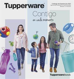 Catálogo Tupperware en Tijuana ( Más de un mes )