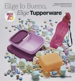 Ofertas de Hogar y Muebles en el catálogo de Tupperware en Playas de Rosarito ( Más de un mes )