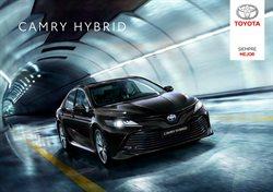 Catálogo Toyota ( Más de un mes )