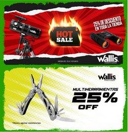 Ofertas de Wallis en el catálogo de Wallis ( Vencido)
