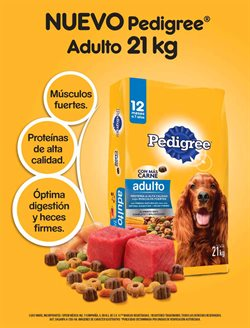 Ofertas de Pedigree  en el folleto de Sam's Club en Iztapalapa
