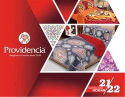 Catálogo Providencia ( Más de un mes)