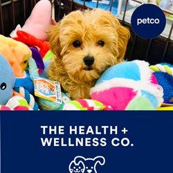 Catálogo Petco ( Vence hoy)