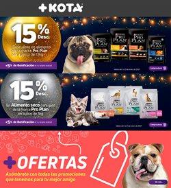 Catálogo Maskota en Ecatepec de Morelos ( Caducado )