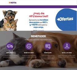 Ofertas de Ocio en el catálogo de Maskota ( 15 días más)