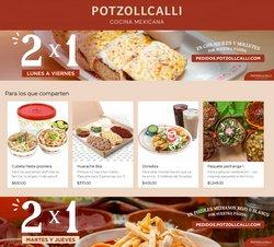 Catálogo Potzollcalli ( Vence hoy)