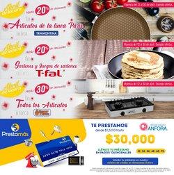 Catálogo Almacenes Anfora en Santiago de Querétaro ( 2 días publicado )