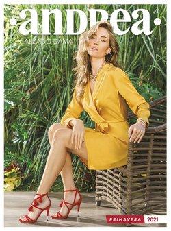Catálogo Andrea en Monterrey ( Más de un mes )