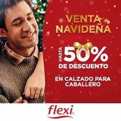 Catálogo Flexi en Heróica Puebla de Zaragoza ( Caducado )