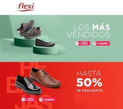 Catálogo Flexi ( 3 días más)