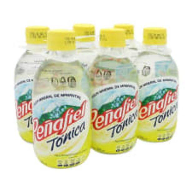Oferta de Agua mineral Peñafiel tónica 6 pzas de 296 ml c/u por $48
