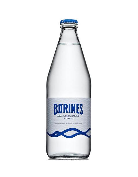 Oferta de Agua Natural Mineral Borines - 500 ml por $38.5