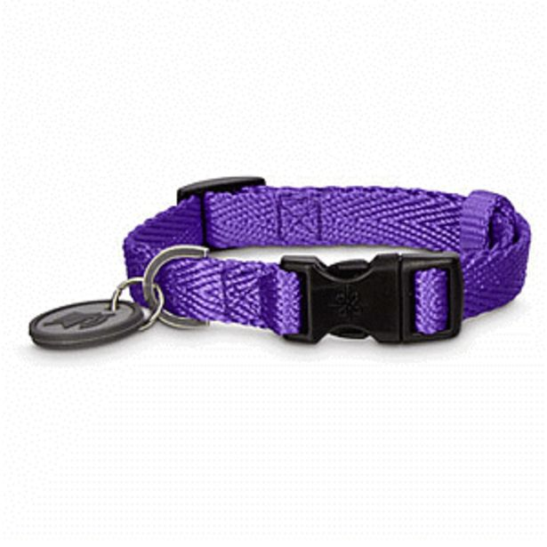 Oferta de Good 2 Go Collar Nylon Ajustable Morado Mediano 36 - 51 cm por $99.5