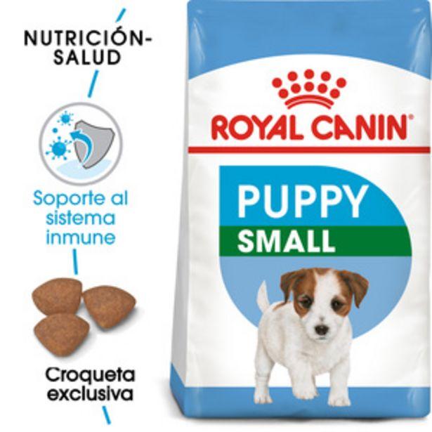 Oferta de Royal Canin Alimento Seco para Cachorro Raza Pequeña Receta Pollo, 5.9 kg por $910.2