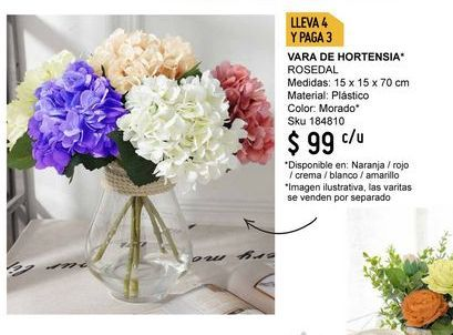 Oferta de Flores por