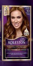 Oferta de Tinte Koleston N53 Atarde Castaño 218 Gr por
