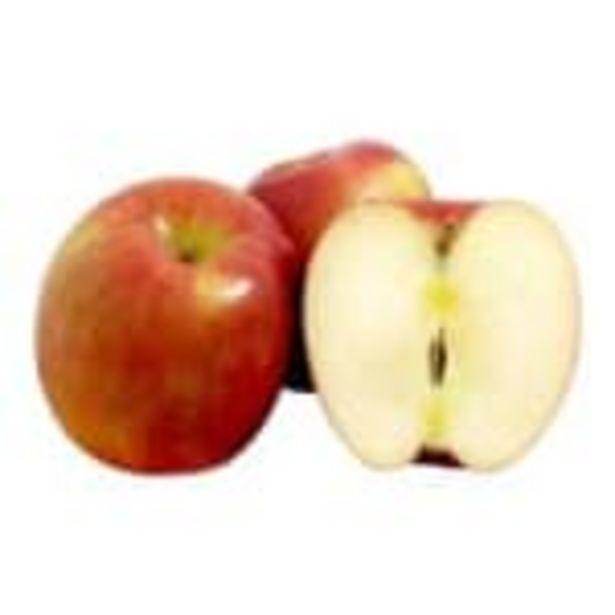 Oferta de Manzana gala kilo por $49.9