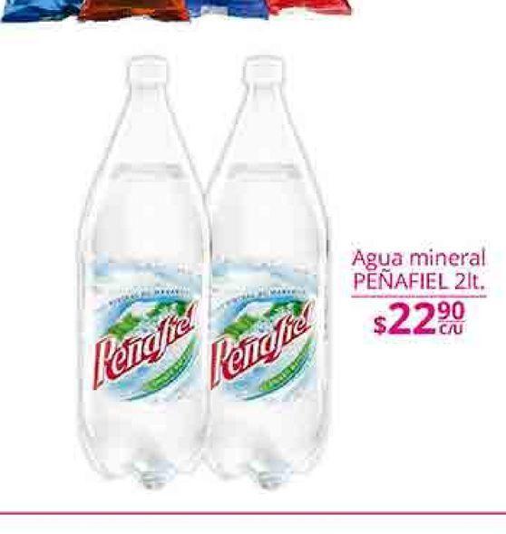 Oferta de Agua con gas Peñafiel por $22.9