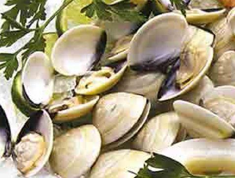 Oferta de Almeja blanca kg por $109