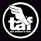 Info y horarios de tienda TAF en AV. SANTA FE # 94 Y ANTONIO DOVALL JAIME # 70, PL-10/PI-11 COL. CEDEC SANTA FE